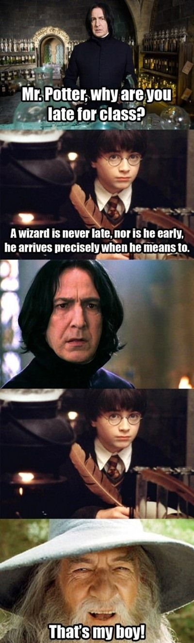 Not that Gandalf and Dumbledore are played by the same actor..... Still funny.