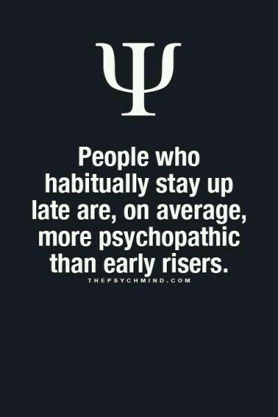 I'm a night owl and an early riser...