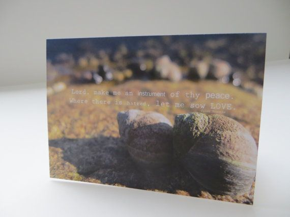 Sow Love Photograph  4x5.5  Art Recycled Paper by LoveRockResidue, $3.50