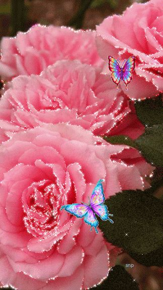 Glimmering roses and butterflies