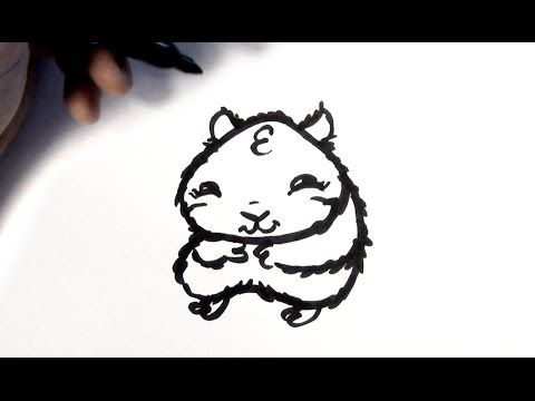 how to draw a cartoon hamster