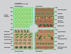 Mit Fruchtwechsel zu mehr Erfolg im Gemüsegarten | Februar 2013 | Familienheim und Garten