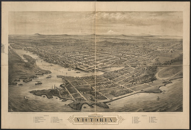 Birds eye view of Victoria/Vancouver Island, B.C.; a lithographed panoramic view of 1878.