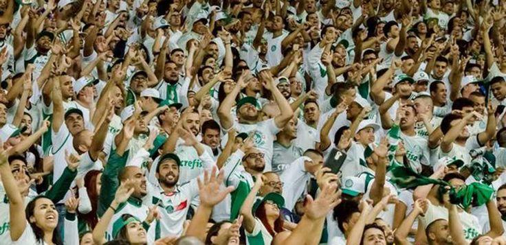 Corintianos, santistas e são-paulinos viram sócios do Palmeiras