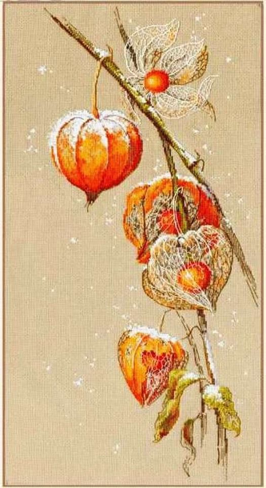 This cross stitch design of cape gooseberries dusted by snow is by Golden Hands designs.