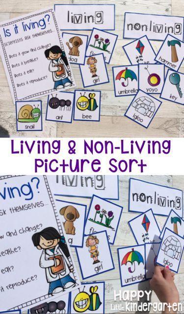 Happy Little Kindergarten: Science Activities: Living & Non-Living