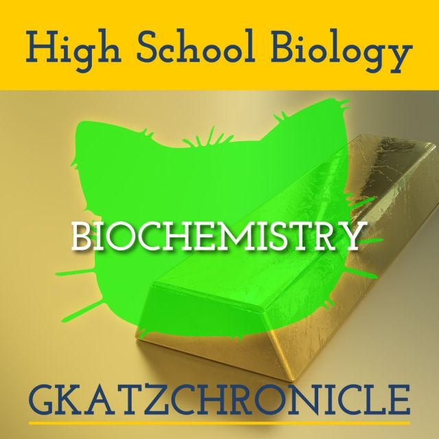 Nova Hunting The Elements Video Worksheet Biochemistry With