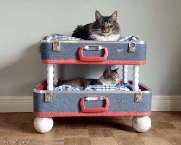 10 DIY Cat Bed Ideas  #diy #cats #pets #animals