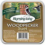 Morning Song 11462 Woodpecker Suet Wild Bird Food, 9.5... * Check this awesome product by going to the link at the image.