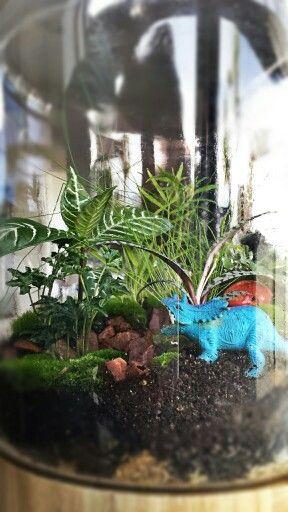 A prehistoric rain forest terrarium.