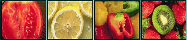 "Which types of fruit make the most seeds? In the ""How Many Seeds Do Different Types of Fruit Produce?"" #science project, students put their observation and counting skills to work as they investigate and compare different fruits to calculate the productivity for each type of fruit. [Source: Science Buddies, http://www.sciencebuddies.org/science-fair-projects/project_ideas/PlantBio_p019.shtml?from=Pinterest; Image: Dr. Renfroe, James Madison University] #STEM #scienceproject"
