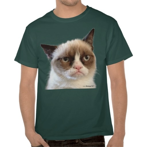 Ugly Birthday Cat: 17 Best Images About Cat T-Shirt On Pinterest