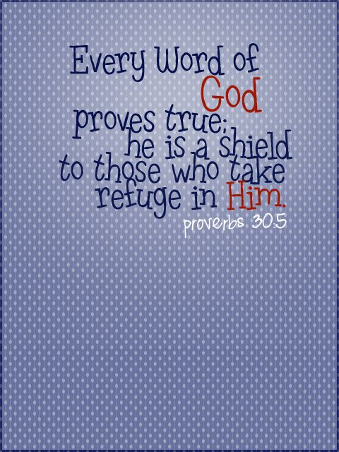 Proverbs 30:5 ~ Every Word of God proves true; He is a shield to those who take refuge in Him... More at http://ibibleverses.christianpost.com/