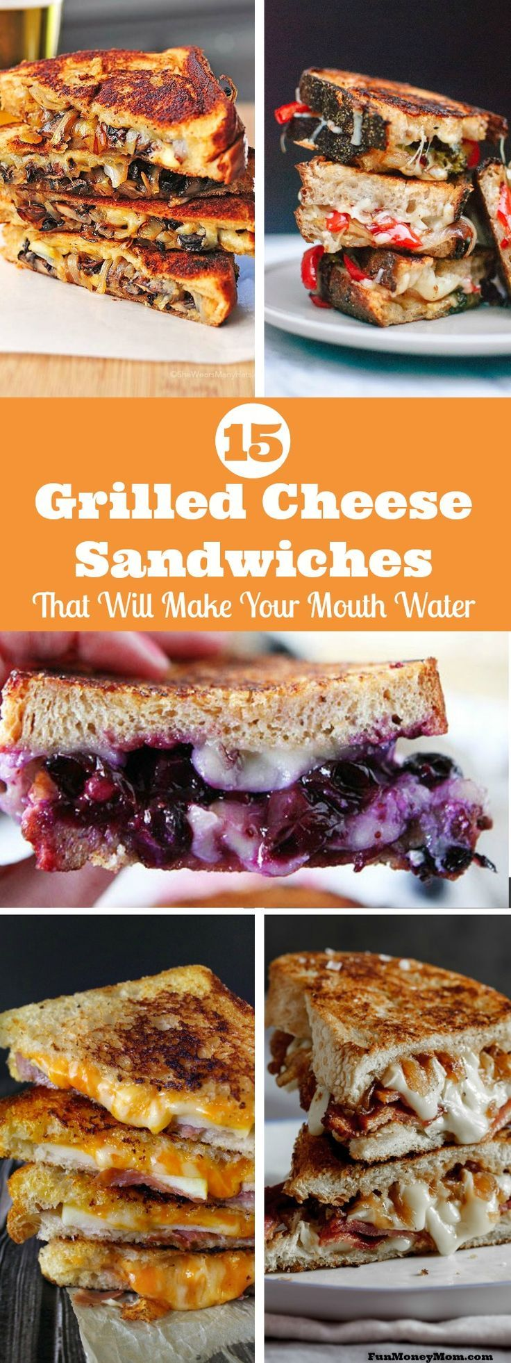 With ingredients like bacon, brie and apples, these fun grilled cheese sandwich recipes will have you craving grilled cheese every day of the week!