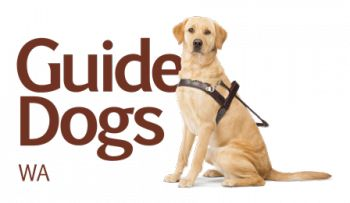 Guide dogs WA can provide direct, individualised and group based services for Western Australian living with blindness and vision impairment.