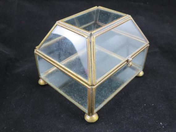 Small Glass Encased Treasure Display Box