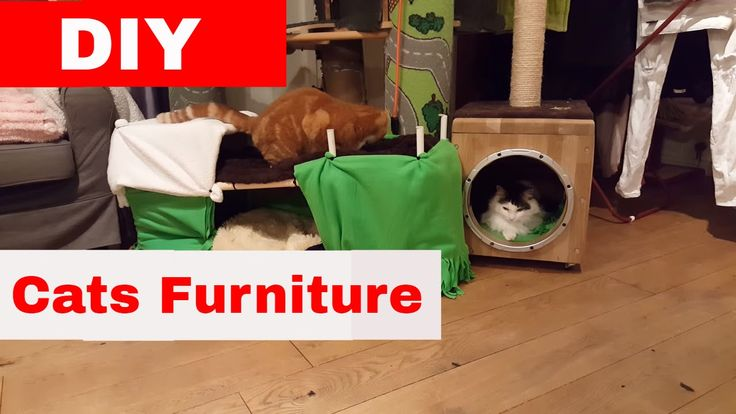 Cats Homemade Furniture - DIY - Guide The Catnip Mafia