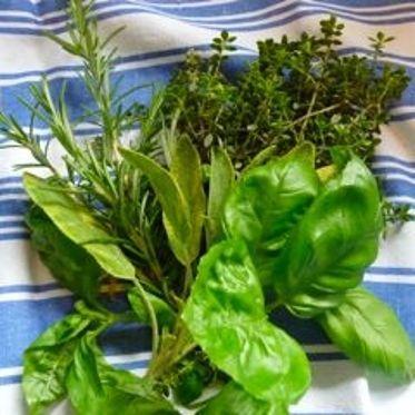 Ein wunderbares Gewürz für alle mediterranen Gerichte wie Suppen, Soßen, Salate, Fleisch- und Fischgerichte.