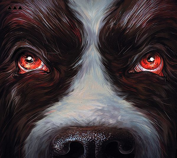 Cujo / Stephen KIng / illustration by Vika Lebedeva #StephenKing #Cujo