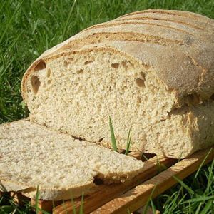 Elle s'est fait sa place dans nos cuisines, la machine à pain nous dépanne bien. Brioche, confiture ou pain de mie, elle en a dans la cuve !