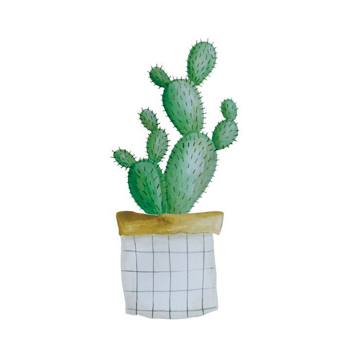 Cactus in paper bag  www.mijksje..nl  Mijksje   illustration   illustratie   ontwerp   plant   illustratie   kaartje   card   freelance
