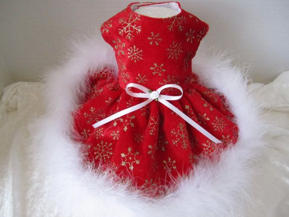 Christmas Dog Dress XS Hot Red with gold by afrodytka1224, $28.00