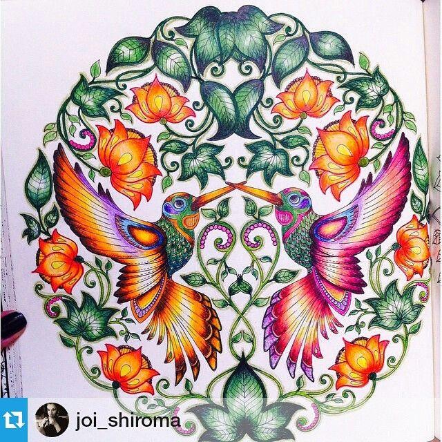 ideias jardim secreto:Secret Garden Coloring Book Hummingbird