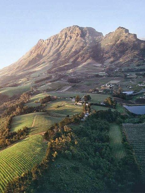 Franschhoek winelands, Cape, South Africa