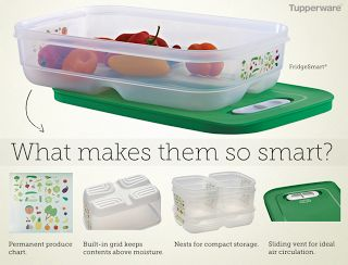 HI-HO HI-HO WITH TUPPERWARE WE GO: FridgeSmart Containers on sale for a limited time at www.my.tupperware.com/lindacwilson