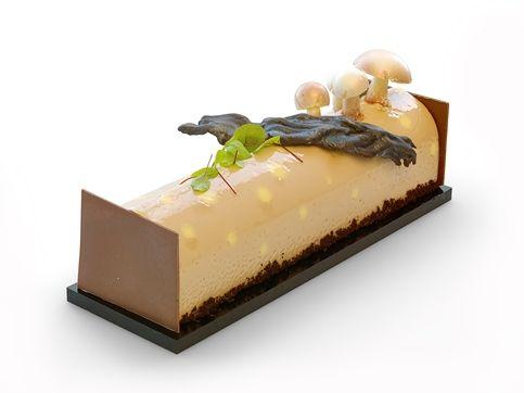 Latest Cake Recipes
