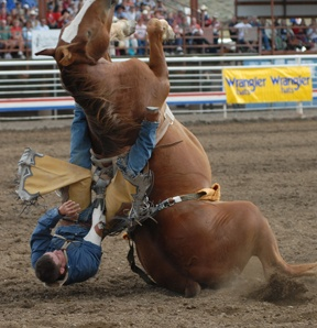 Rodeo life, and the football is hard core!