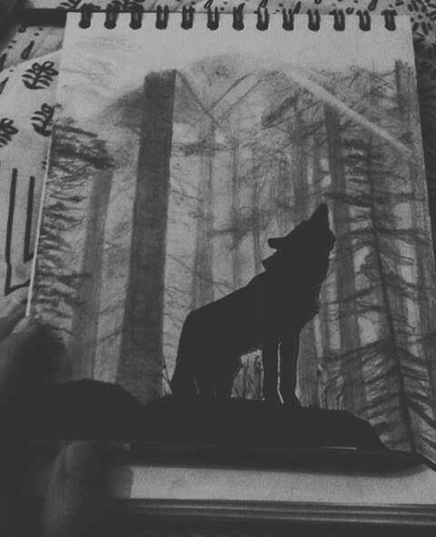 dig up her bones, wolf artwork, by Geromorris