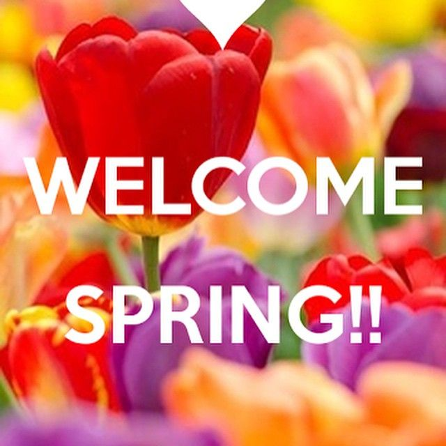 Spring is here! Let's enjoy this beautiful weather