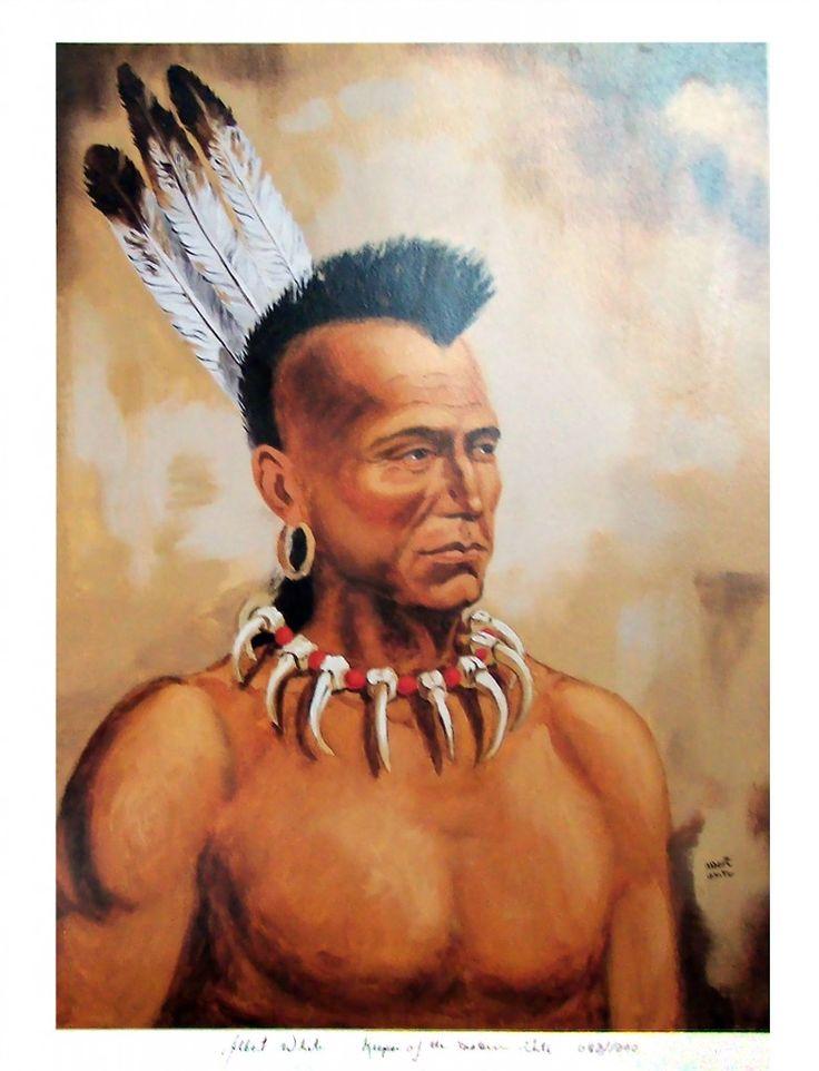 картинки прически ирокез апачи техника красивое