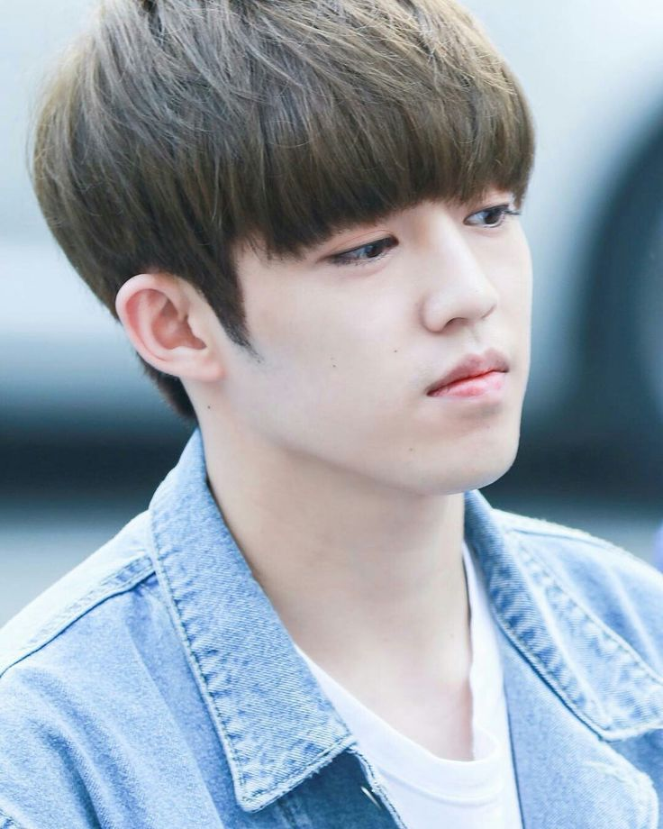 Seventeen leader S.Coups