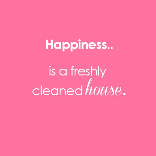 Cleaning Quotes Stunning 30 Best Cleaning Quotes Images On Pinterest  Cleaning Quotes