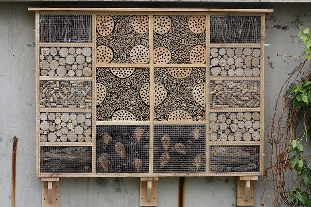 IMG_1517 Insect Hotel by tobyjug5, via Flickr