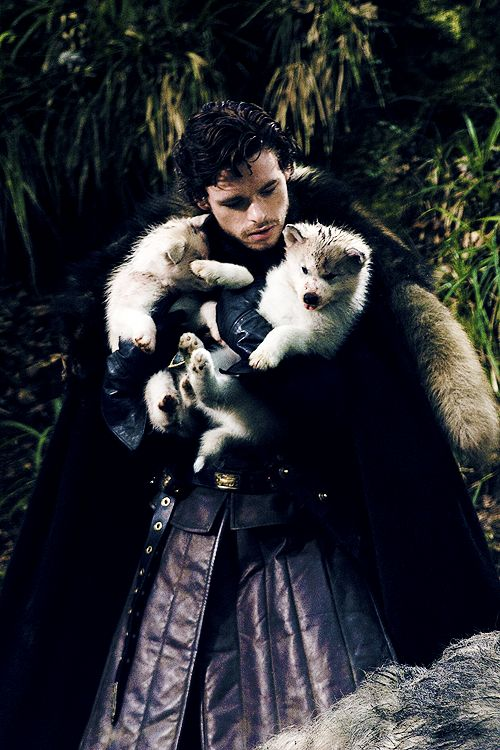 Robb Stark and his dire wolf pup Grey Wind