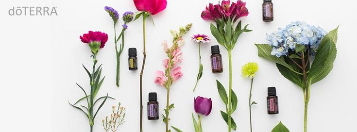 I love essential oils, do you? I fell in love with aromatherapy and essential oils a few years ago. After trying many brands over the years I finally came across doTerra and have been so happy with the results of using them that I went from user to business builder.   Can I be honest about somet