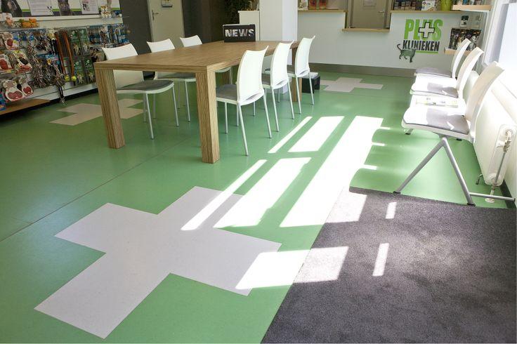 ontvangstruimte van de Plus Dierenkliniek. Groen, wit en zebrano hout ...