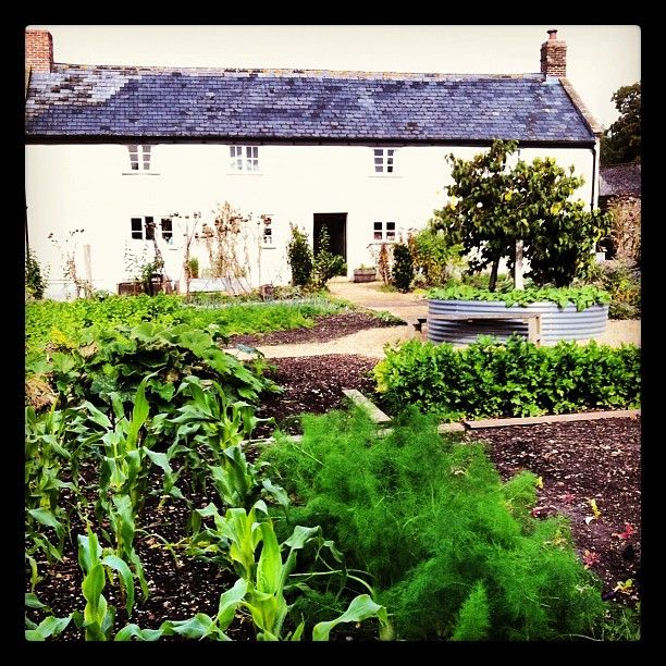 River Cottage Kitchen: 135 Best Images About Green Living On Pinterest