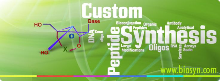 Custom Peptide Synthesis: Guidelines to Follow | Peptide Biosyn