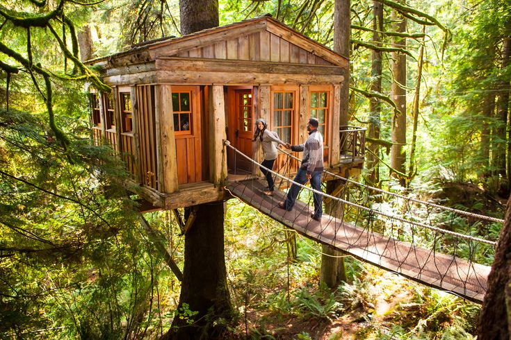 6 Over-the-Top Tree Houses You Can Actually Rent