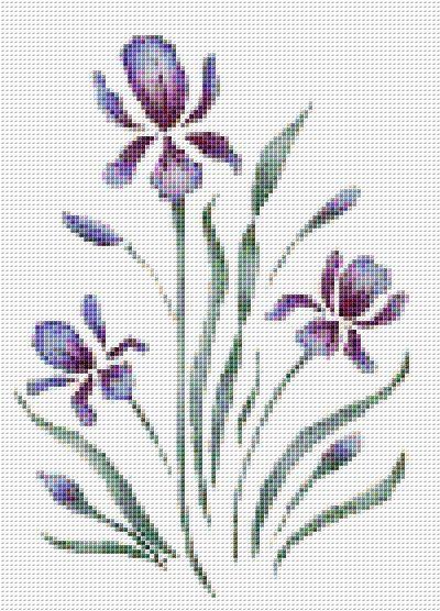 Purple Iris Counted Cross Stitch Pattern by xstitchpatterns
