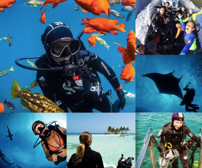 The Best Scuba Dive Blogs to follow in 2017
