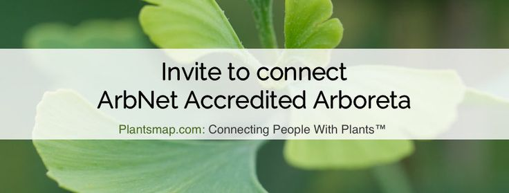 Plantsmap.com is excited to invite ArbNet Accredited Arboreta to connect with the ArbNet profile on Plants Map.   The ArbNet Accreditation Program was started by The Morton Arboretum as a way to establish and share a widely recognized set of industry standards and guidelines to unify the arboretum community.  In April 2011, ArbNet.org was launched to support the common […]