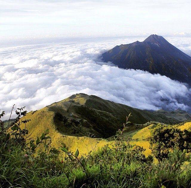 Gambaran Pemandangan Gunung Yang Indah Petani Bekerja Keras Demi Menanam Dan Merawat Padi Sampai Waktu Panen Tiba Bagi Yang Su Di 2020 Pemandangan Indonesia Gambar