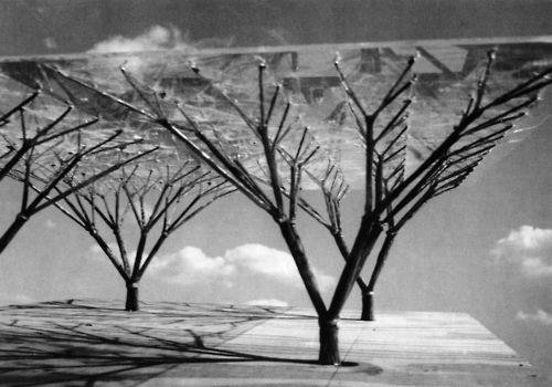 Frei Otto, Tree Structures Project, 1960