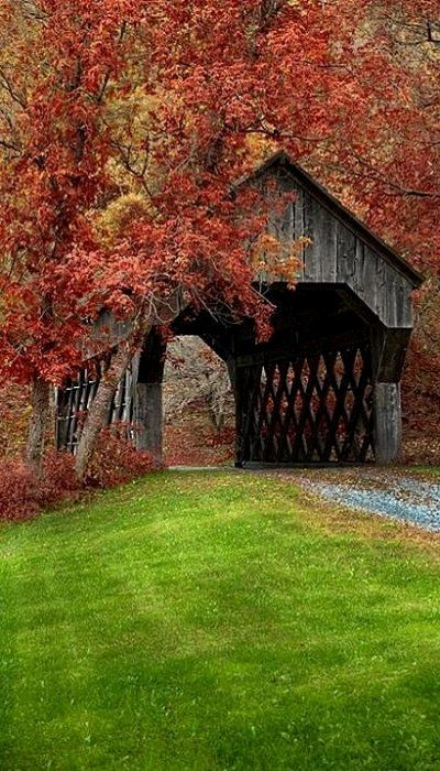 Covered Bridge near Chelsea, Vermont, USA                              …