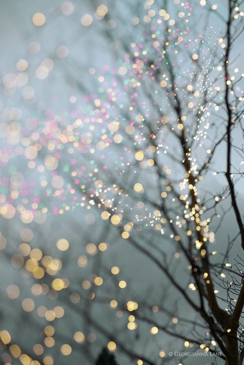 Winter light, image via We Heart It https://weheartit.com/entry/153031140